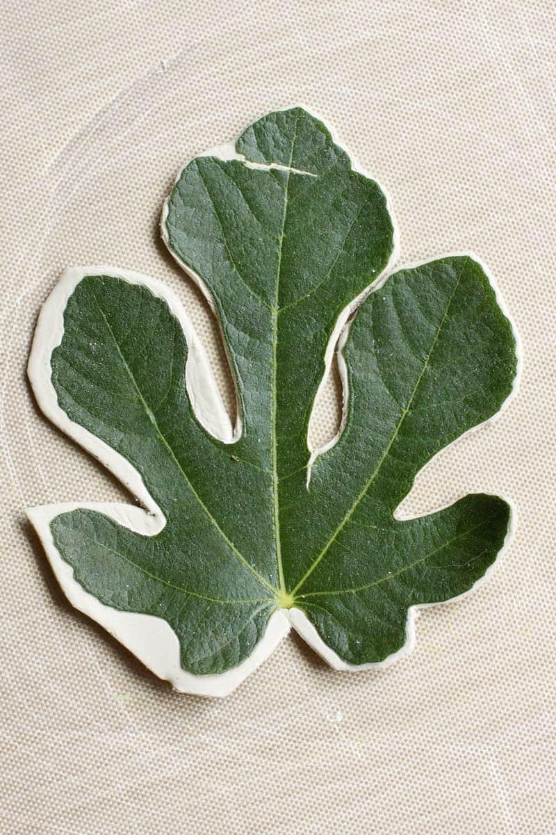 Clay leaf imprint bowls
