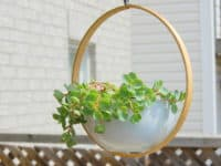 Embroidery hoop hanging planter 200x150 15 Awesome Projects Made Using Embroidery Hoops