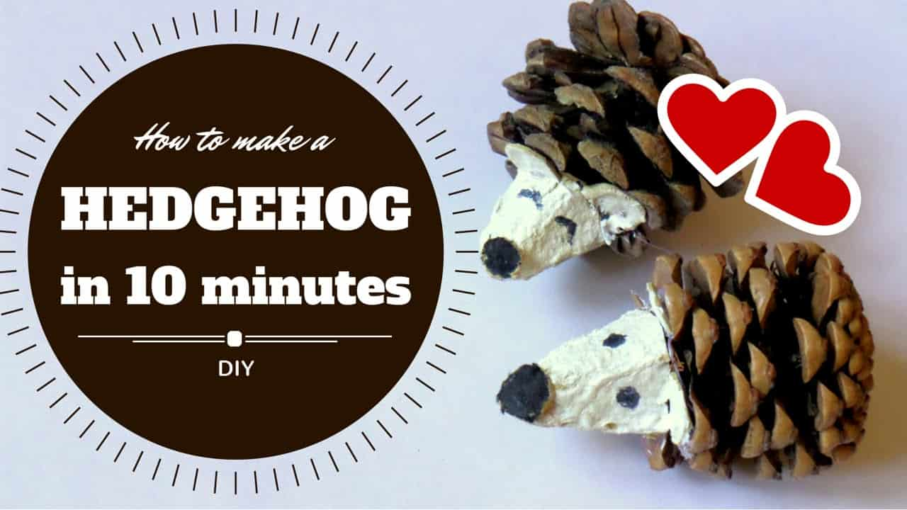 10-minute pine cone hedgehog