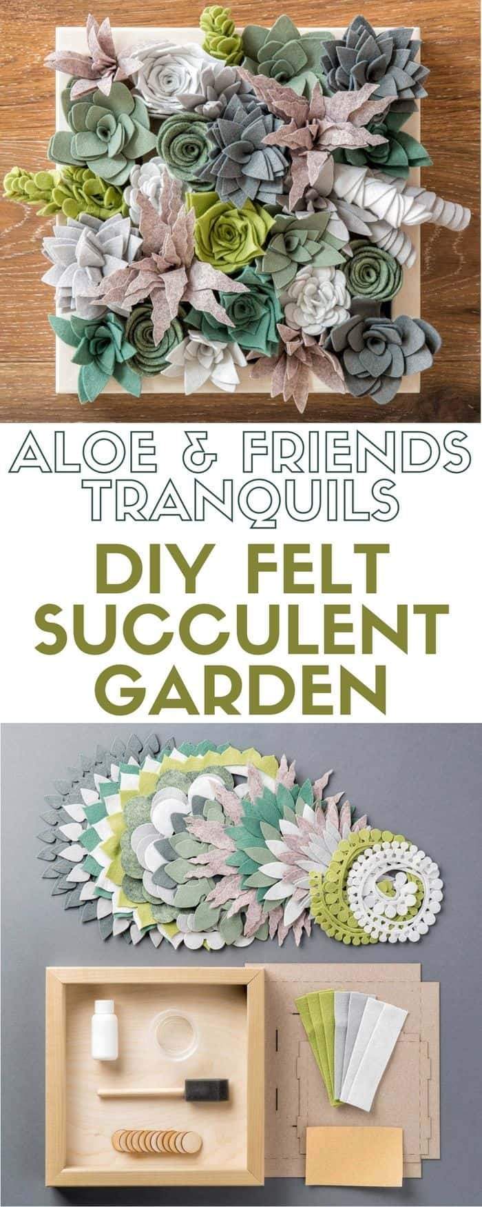 Boxed felt succulents