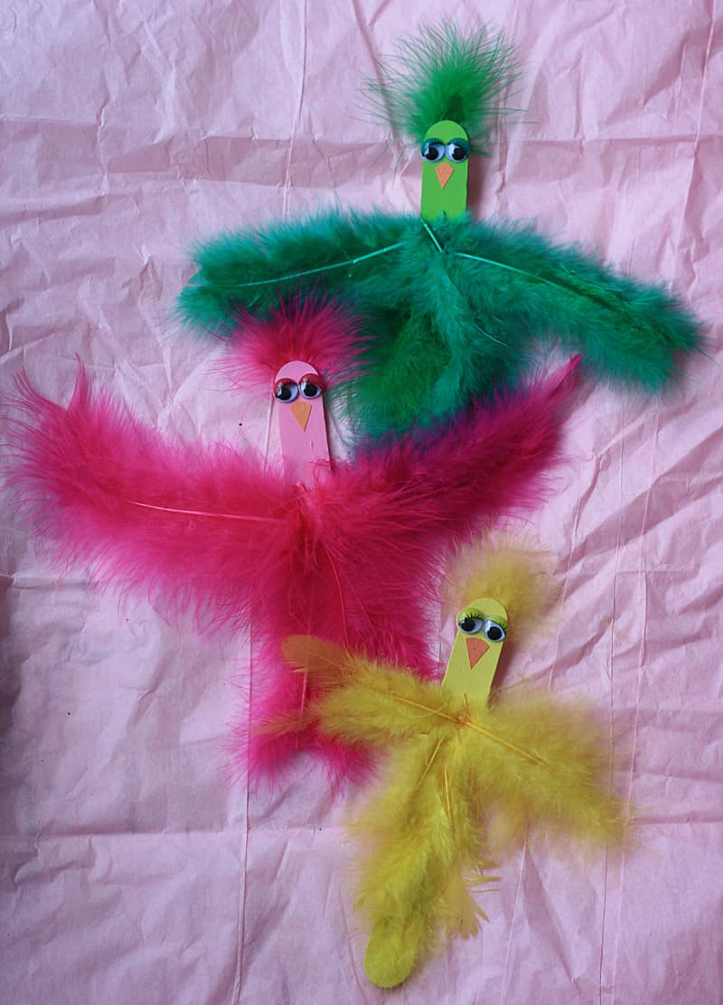 Craft stick and feather birds