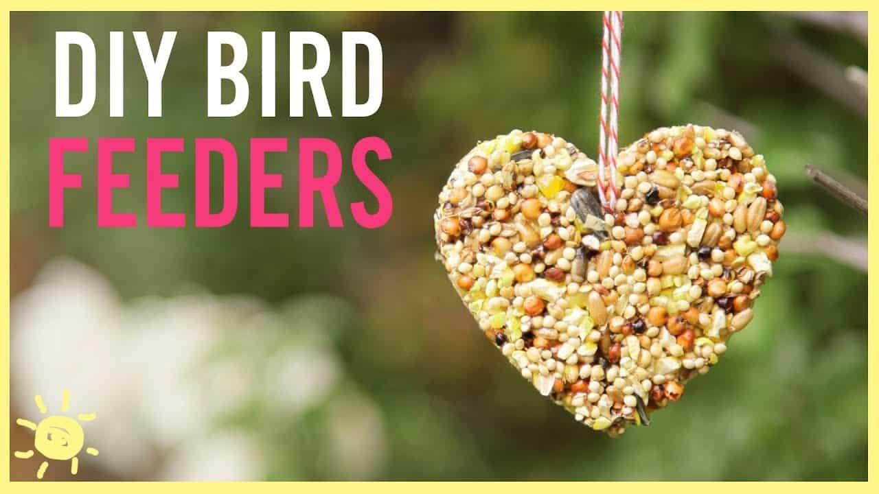 DIY seed heart bird feeders