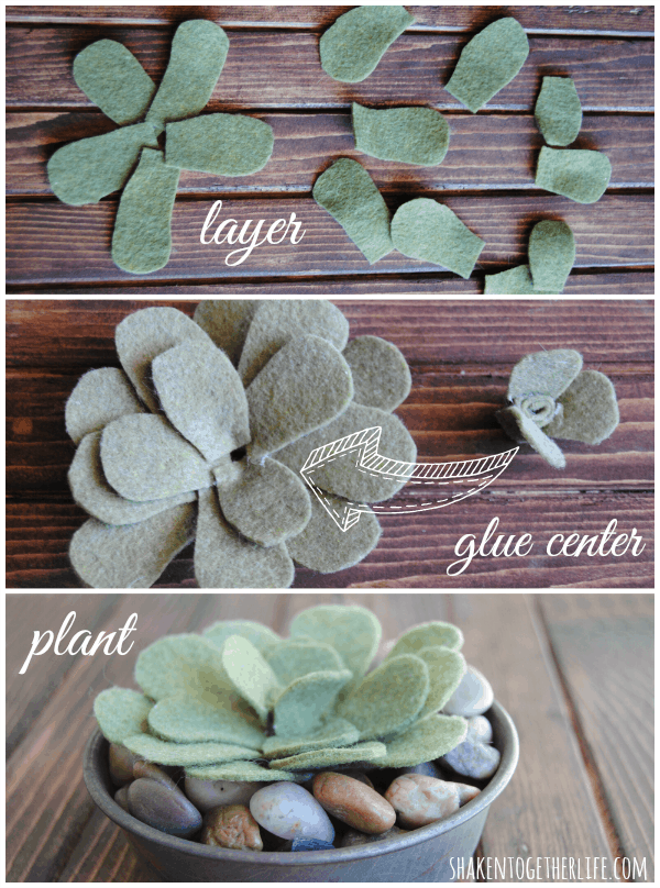 Felt succulent and rock garden
