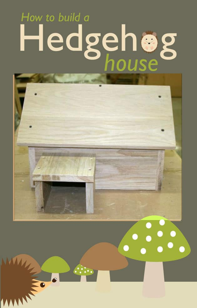 Little wooden hedgehog house