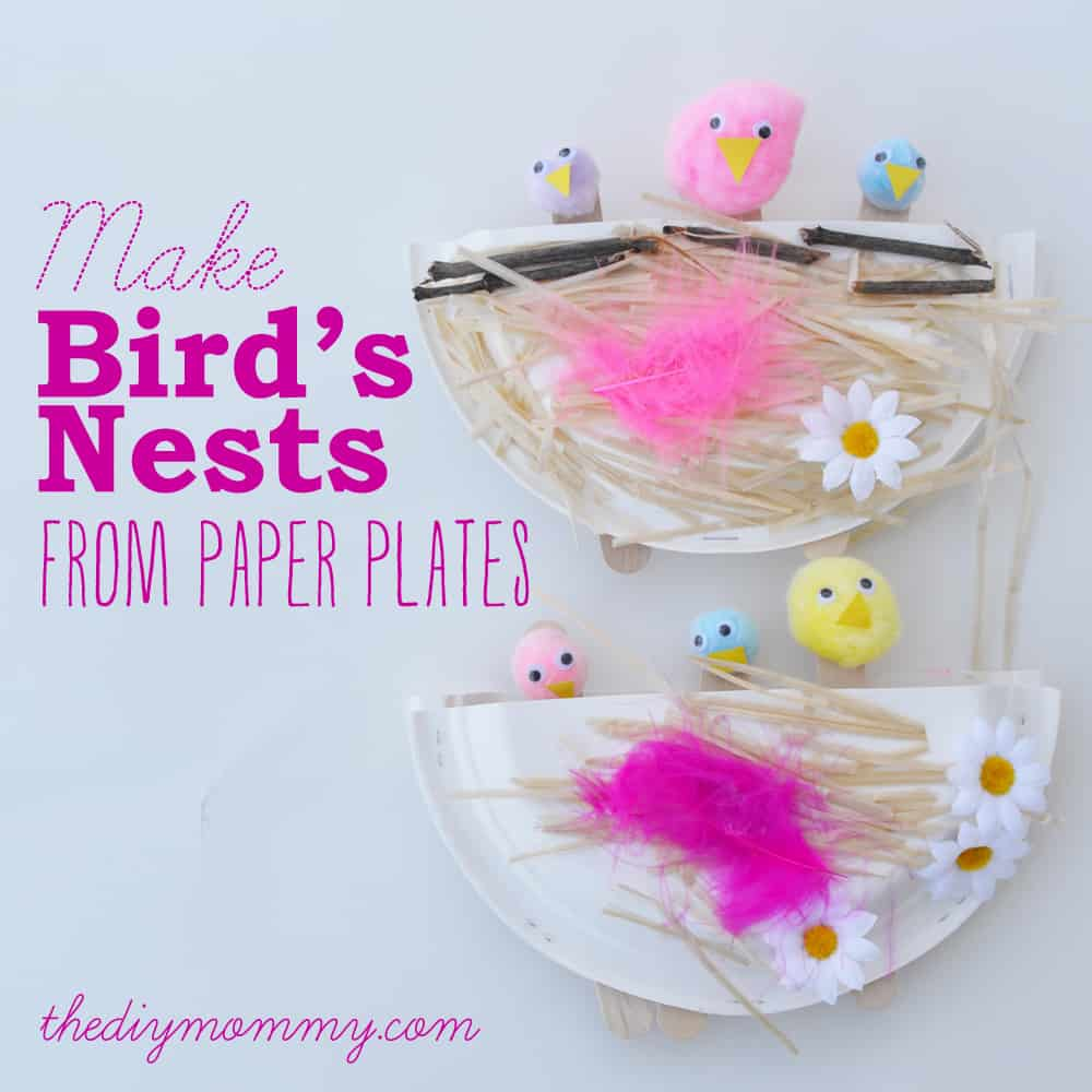 Paper plate, pom pom, and dried pasta bird's nests