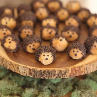 Spiky Fun: Adorable Hedgehog Themed Crafts That Wow!