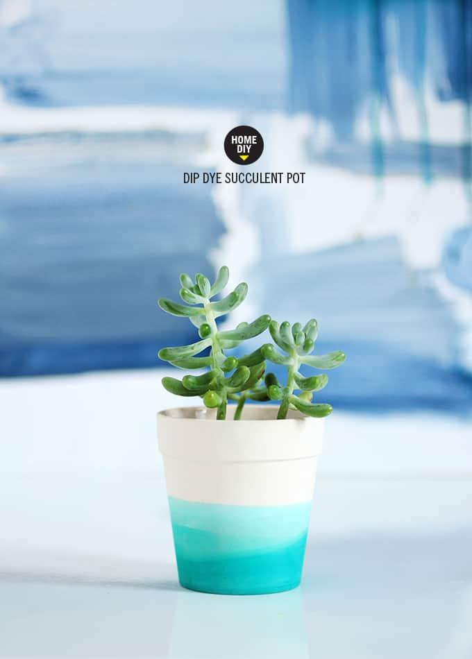 Dip dyed succulent pot
