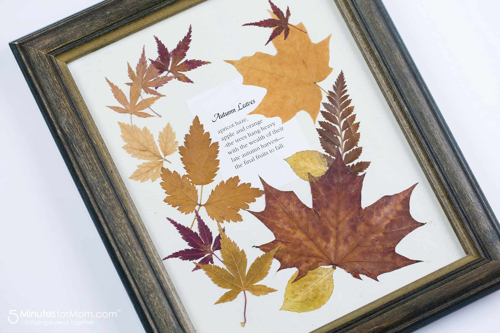 Framed pressed leaves and fall poem