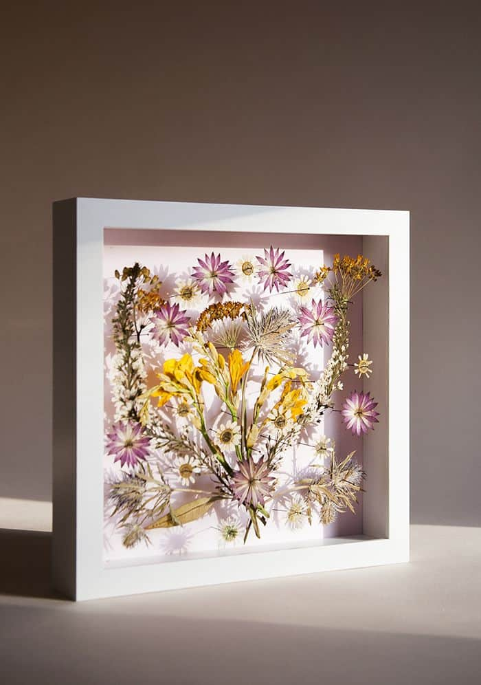 Pressed flower shadow box