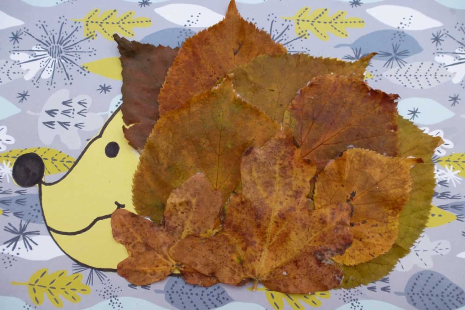 Autumn leaf and paper hedgehogs