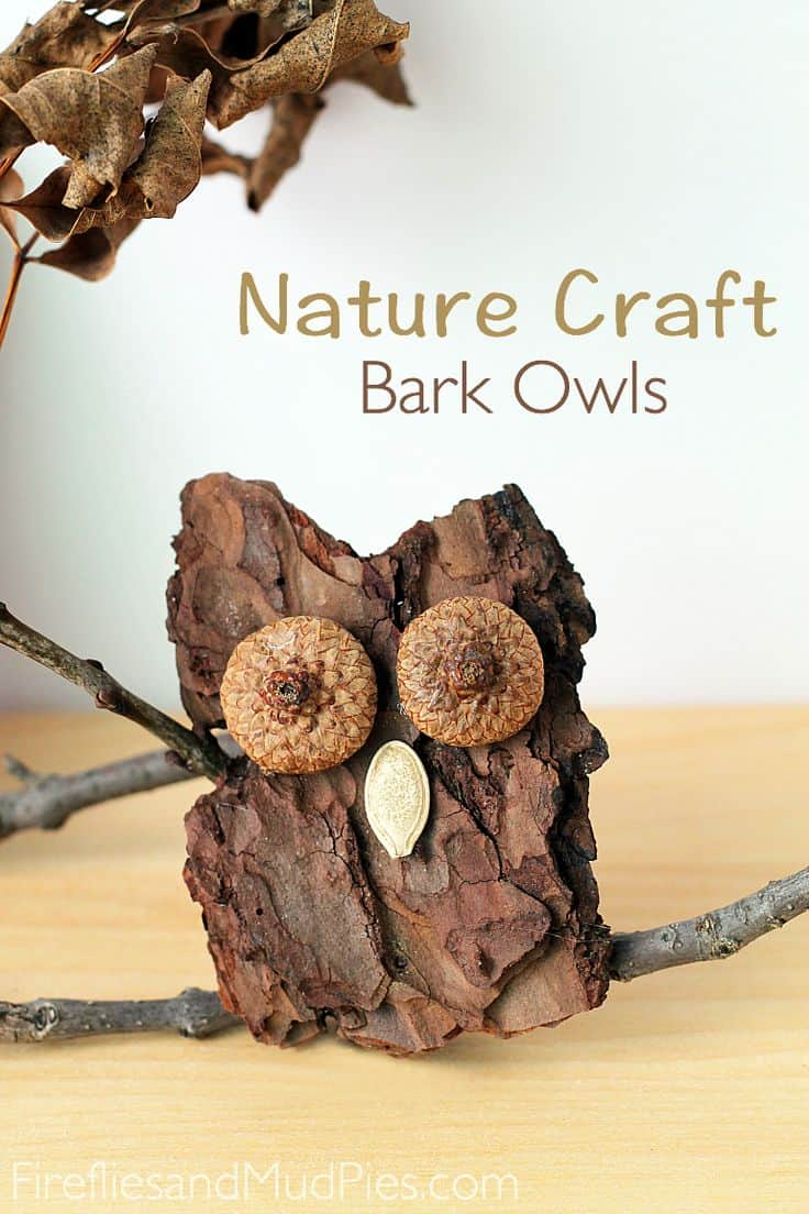 Bark acorn and pumpkin seed owls 15 Beautiful Crafts Made From Nature