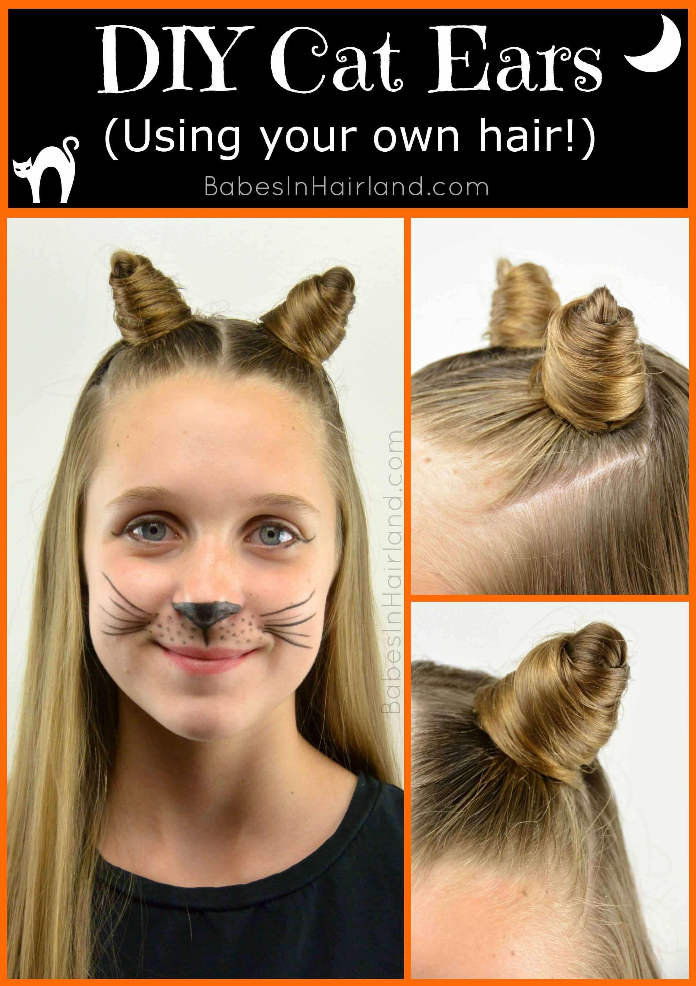 DIY cat ear buns