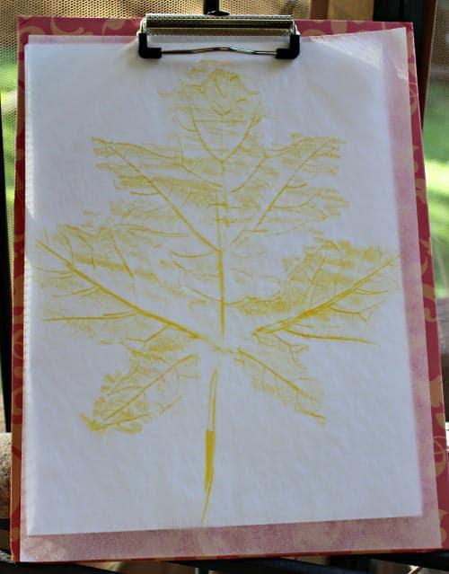 Leaf rubbing art project