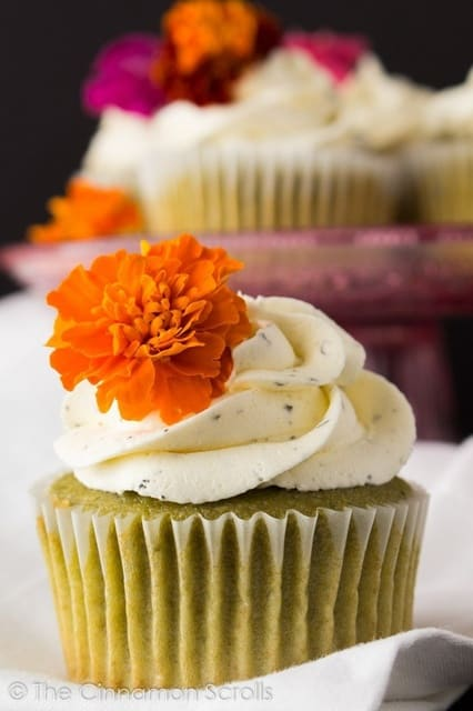 Matcha cupcakes with jasmine buttercream