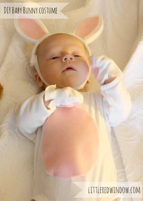 Newborn bunny costume
