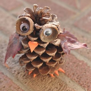 15 Beautiful Crafts Made From Nature