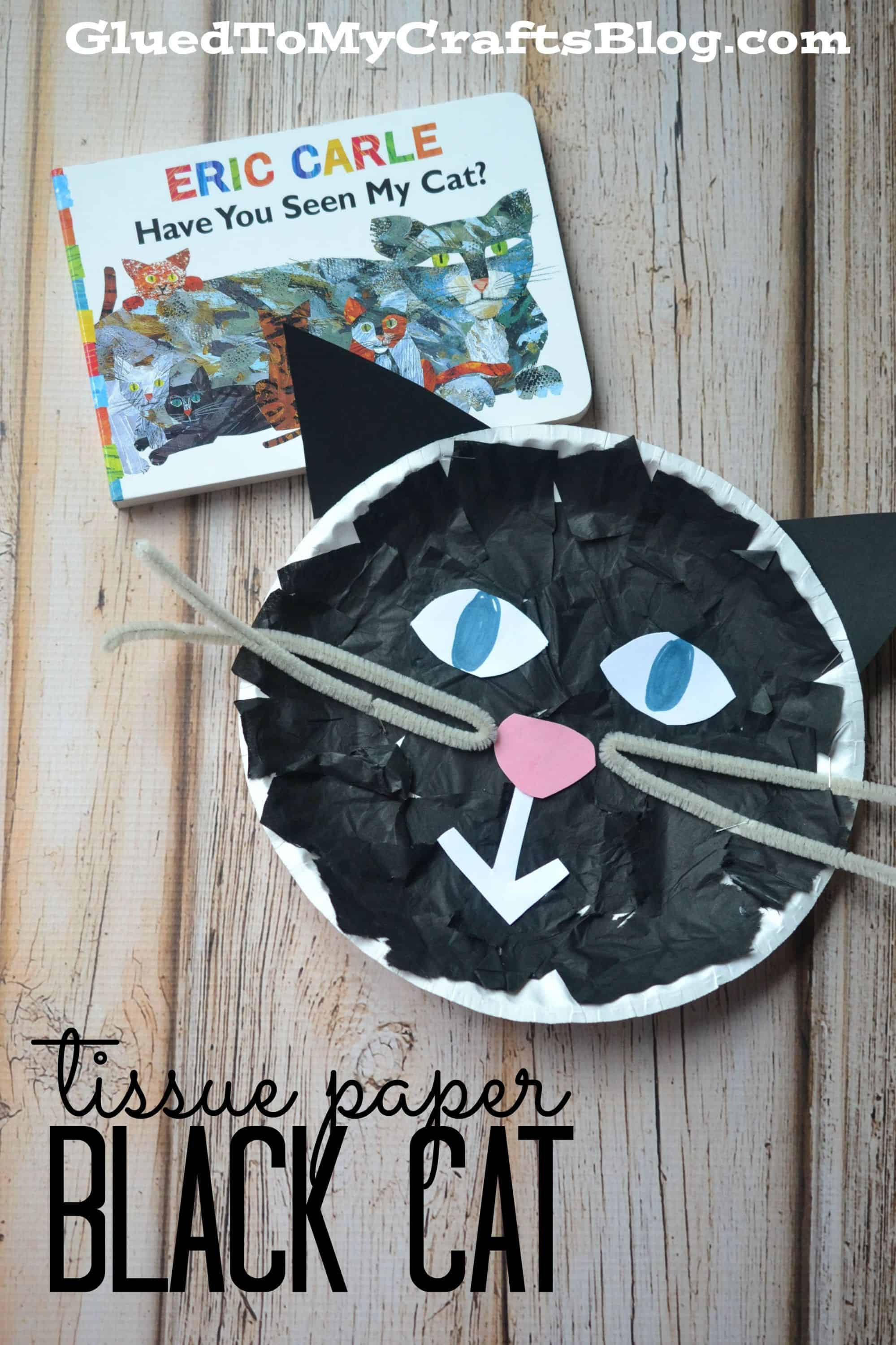 Tissue paper and pipe cleaner black cat