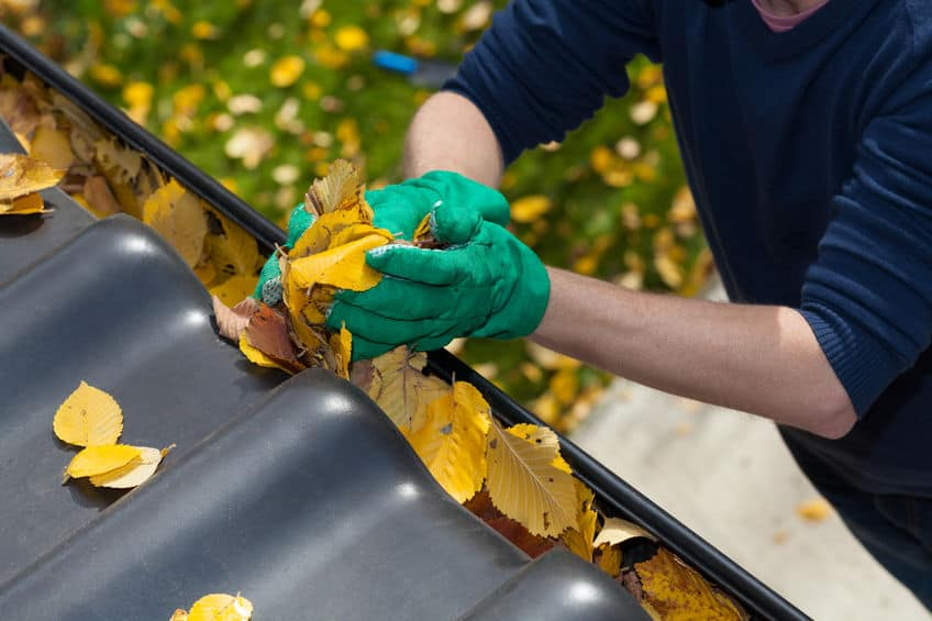 32046313 – cleaning the rain gutter during autumn, horizontal