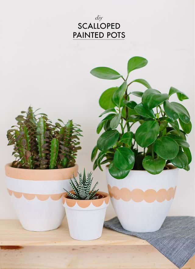 DIY scalloped pots