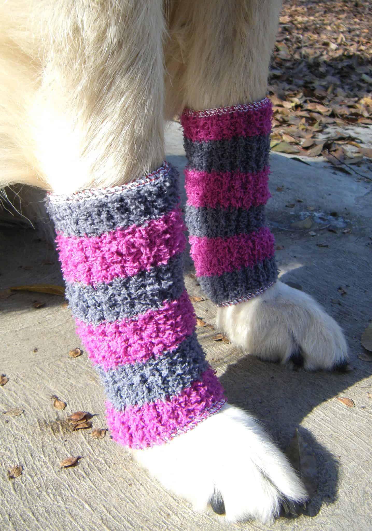 Doggy leg warmers