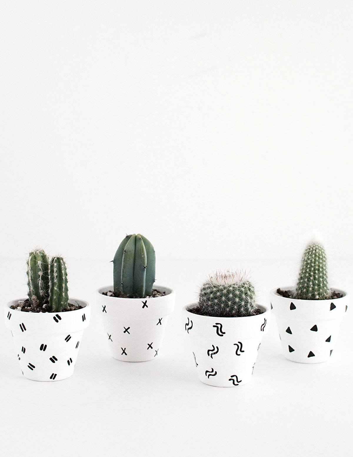 Graphic pattern pots