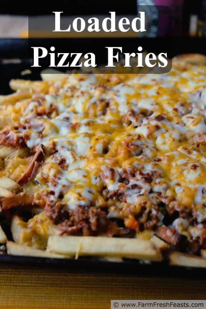Loaded pizza fries