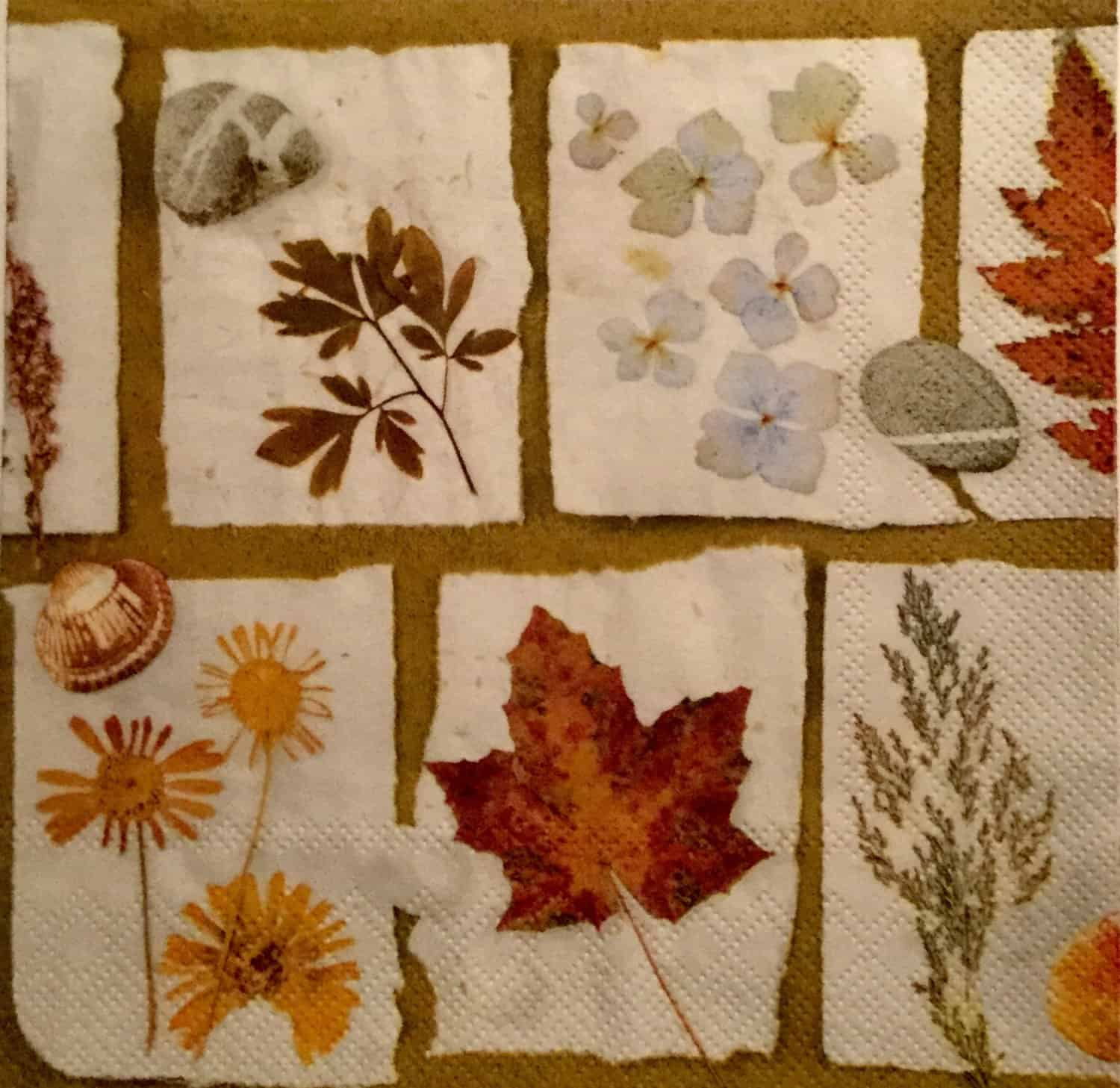 Stunning decoupage fall leaf napkins