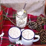 Sipping Festive Joy: Hot Homemade Drinks for The Holidays