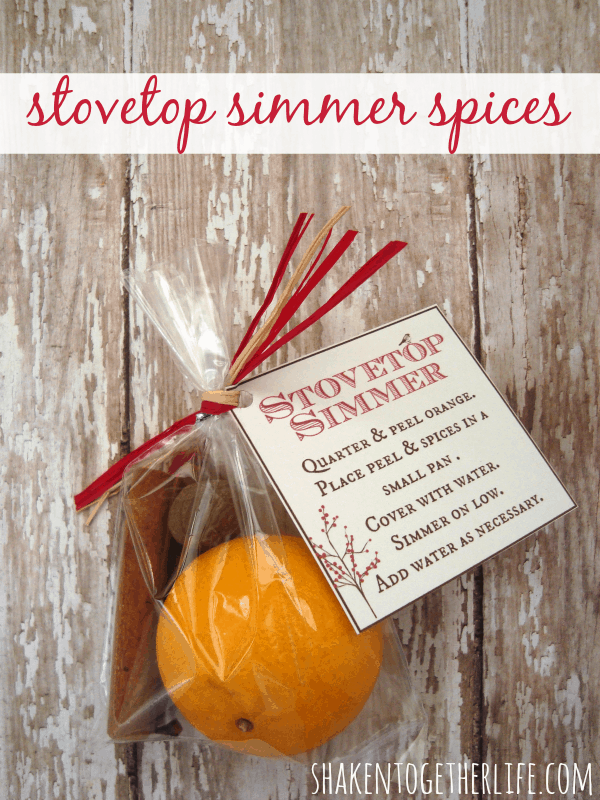 Stovetop simmer spices kit