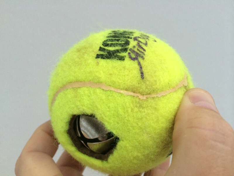 Ball ball for blind dogs