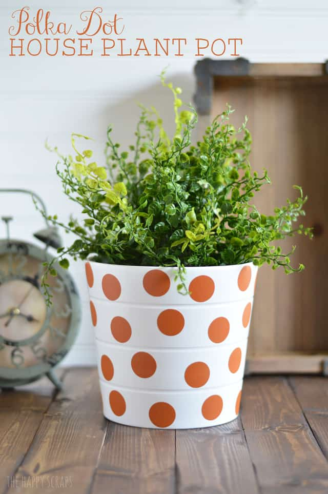 Polka dotted planter pot