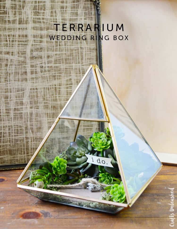 Terrarium ring box