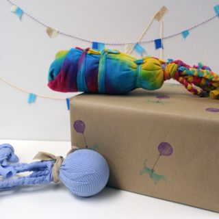For Your Little Buddy: Smart DIY  Pet Toys that are Fun