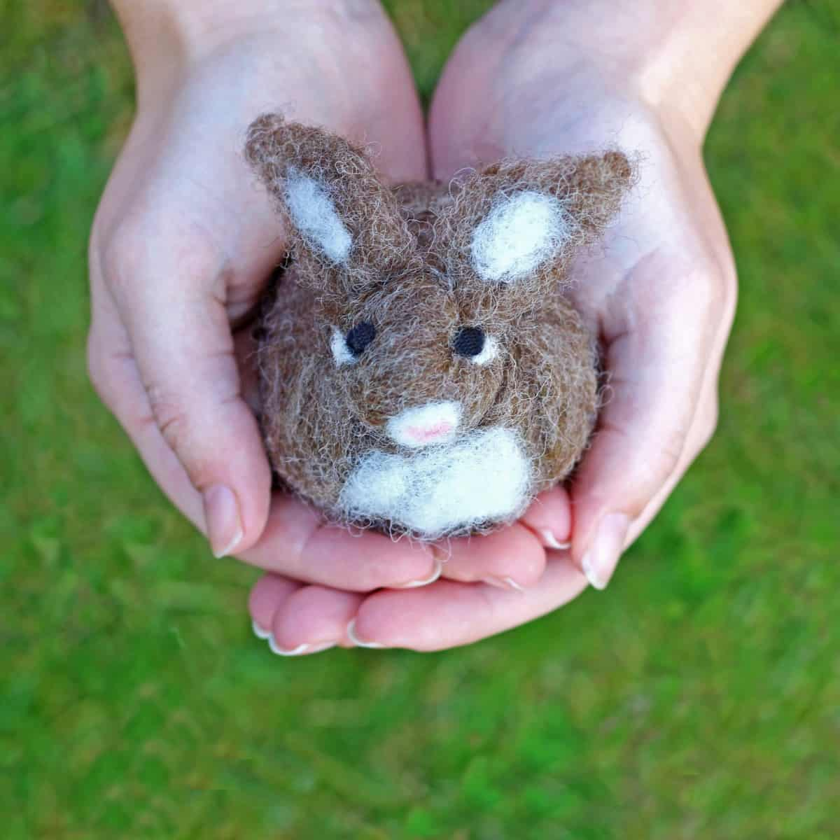 Round felted bunny for beginners
