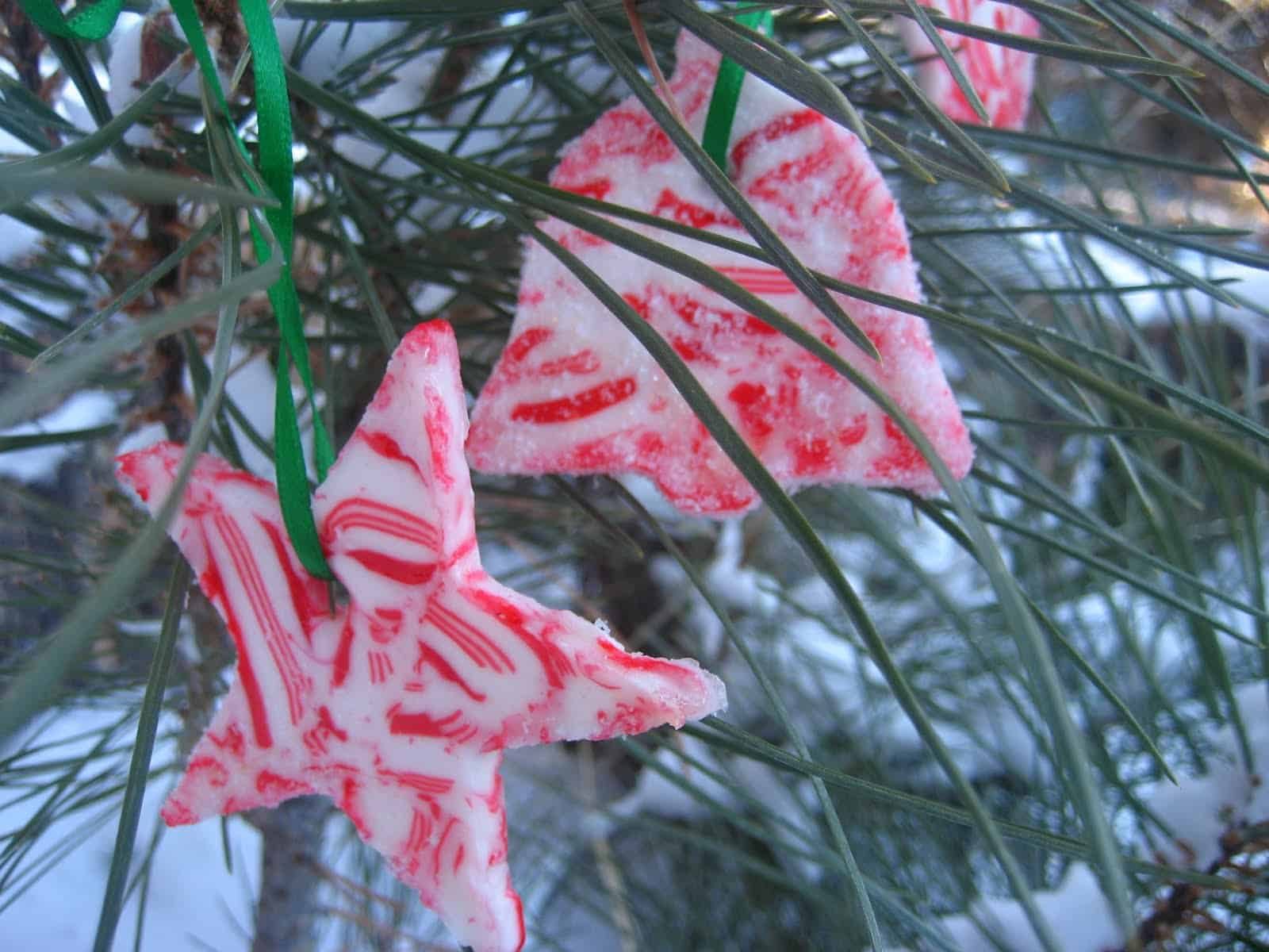 Sugared candy cane cookie cutter tree decorations
