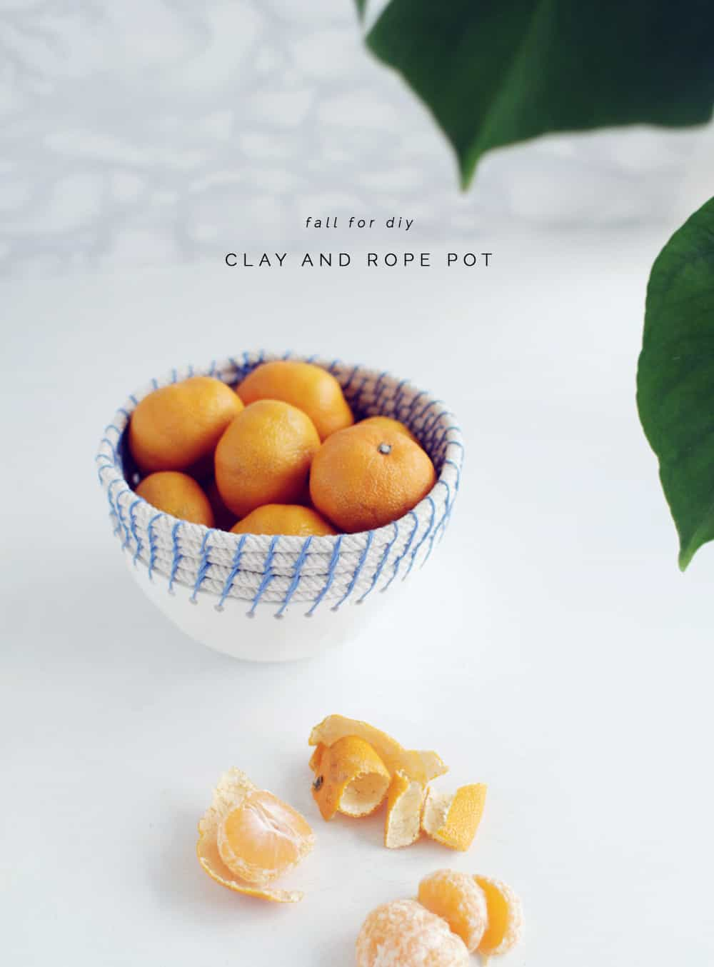 DIY clay and rope pot