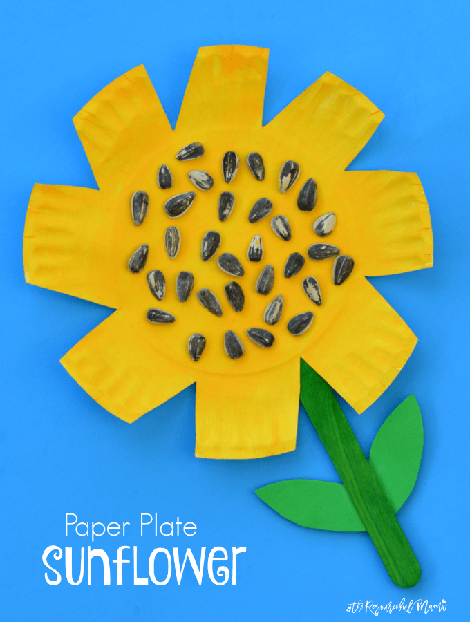 Paper plate and seed sunflowers