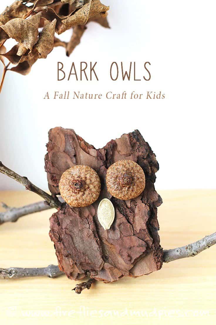 Tree bark owls