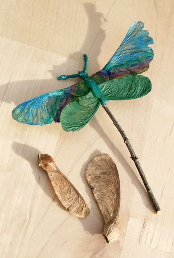 Twig and spinner leaf dragonflies