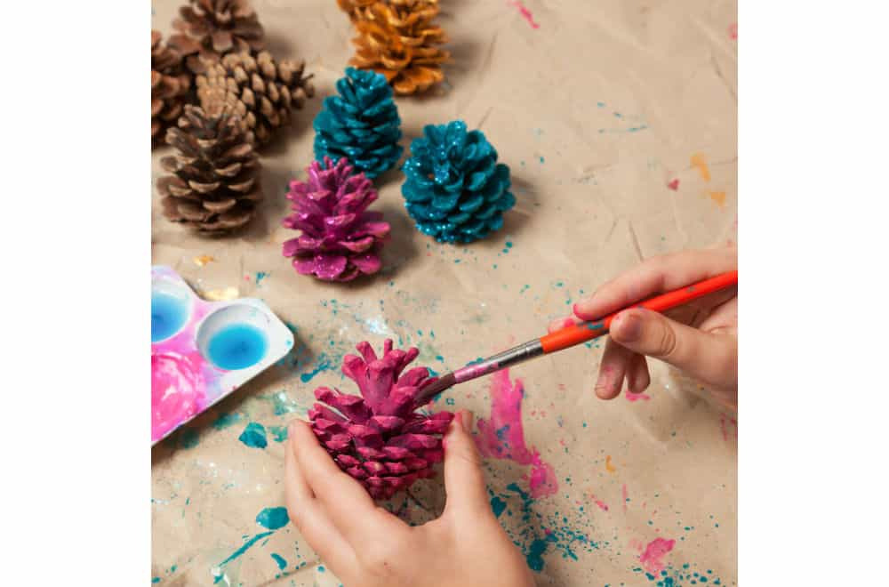 Collect pinecones and make them into crafts