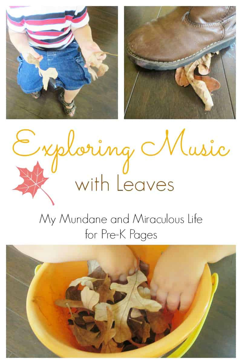 Explore musical sounds with fall leaves