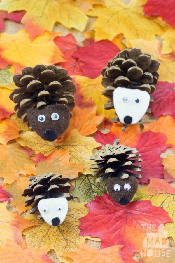 Cute pinecone and felt hedgehogs