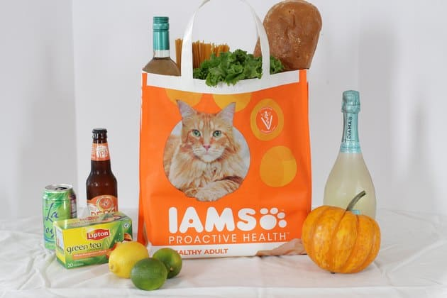 Pet food sack grocery tote