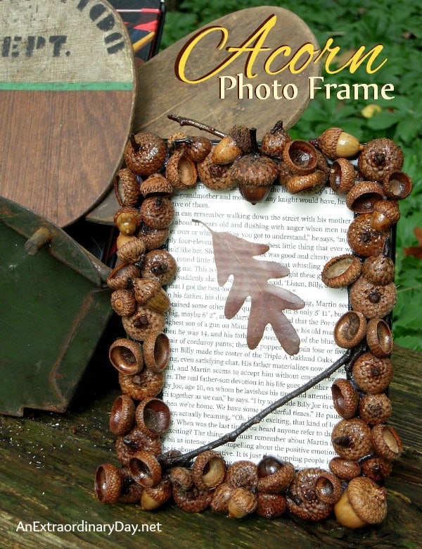 Acorn cap photo frame
