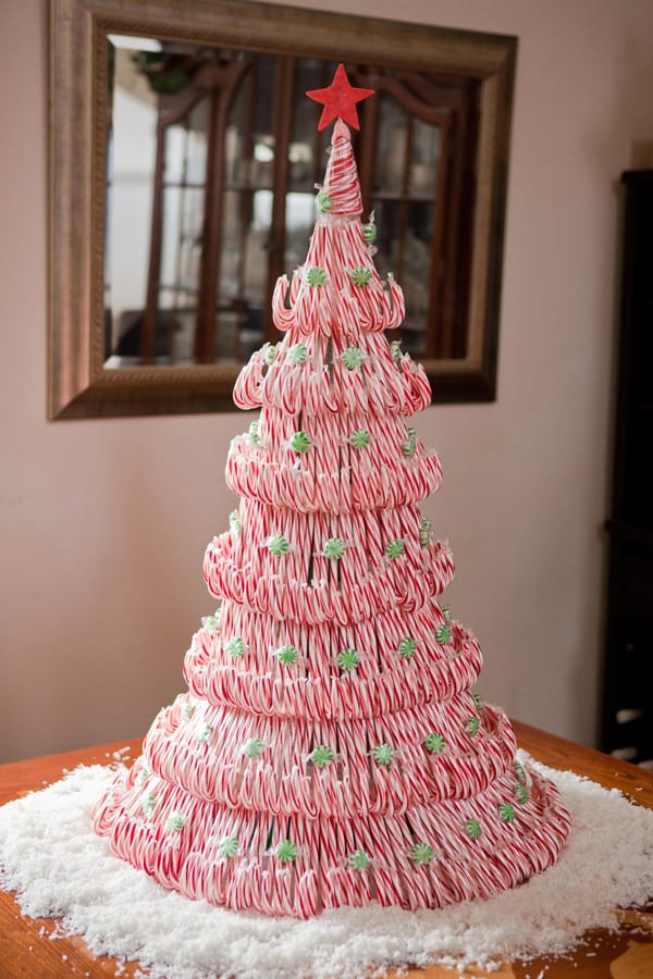 Beautiful candy cane Christmas tree 15 Candy Cane Craft Ideas for Creative Peeps