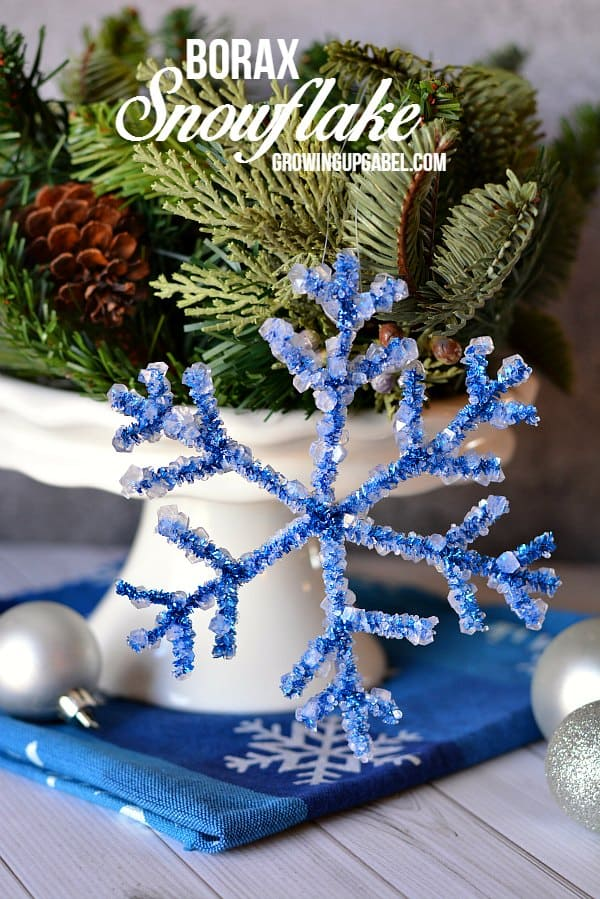 Borax snowflake craft