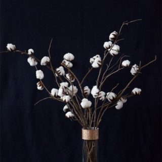 15 Winter Projects Made with Cotton Balls