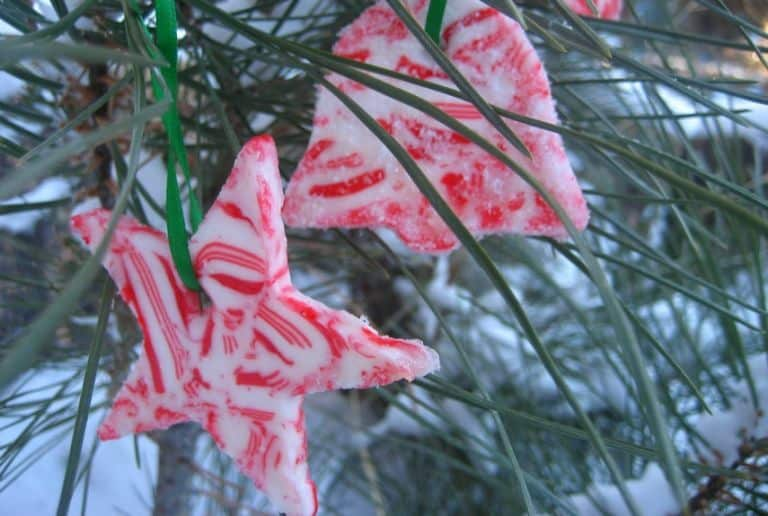 Edible snowy candy cane ornaments