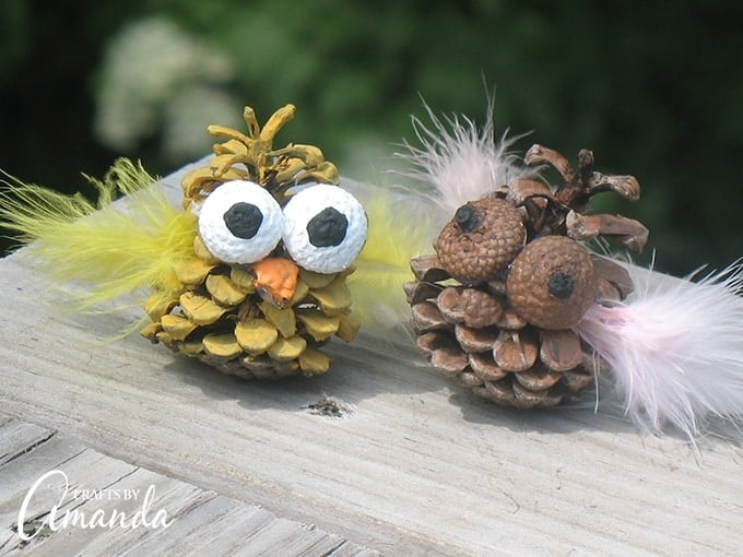 Pinecone and acorn owls