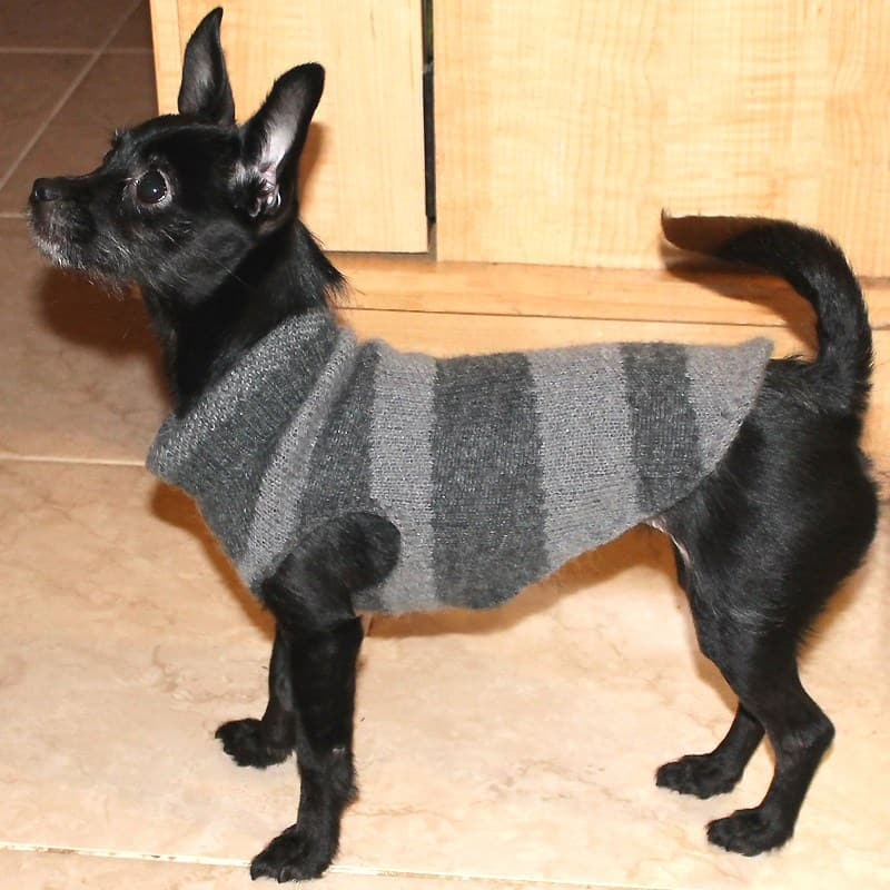 Easy small dog sweater from a big knitted sweater sleeve
